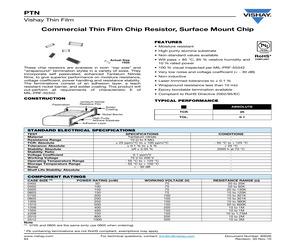 PTN0805K1010DGWS.pdf