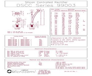 99003-2N17982.pdf